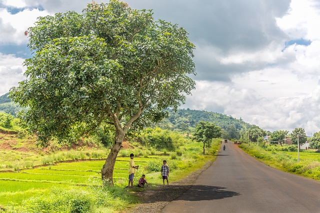 Beautiful town in Andhra Pradesh visited by APSRTC buses